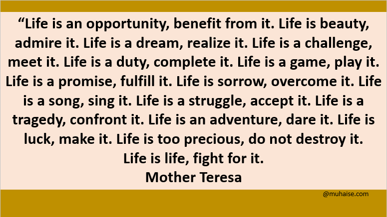 Life is an opportunity